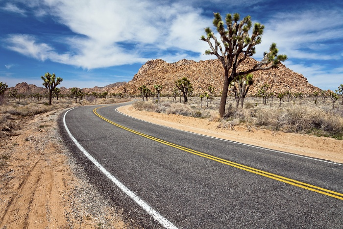 The Roader Cafe Retro Tours Of The American West